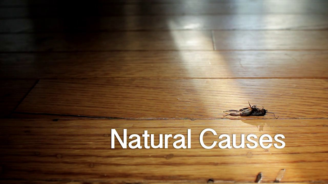 Causes Of Natural Gas Leaks