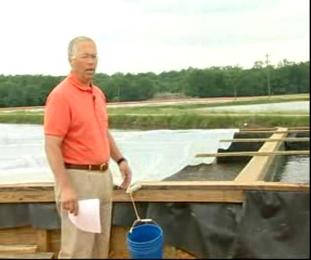 Inland Shrimp Farming in Alabama-Part 2 of 9