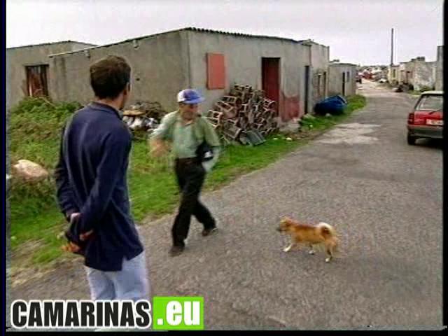 Percebeiros de Santa Mariña - Camariñas 1999