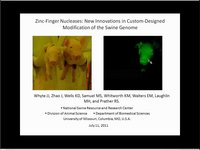 Zinc-finger nucleases: New innovations in custom-design modification of the swine genome, JAM 2011
