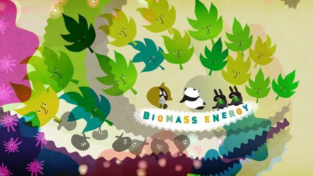 WWF 100% RENEWABLE ENERGY