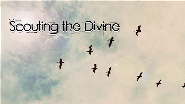 Scouting the Divine: Vine