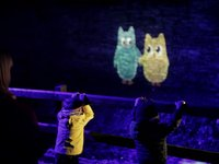Summerhill Glen - Animation Projection