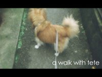 a walk with tete (01:32)