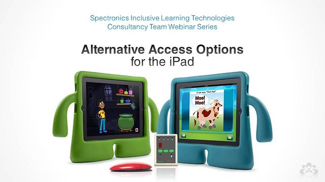 Alternative Access Options for the iPad