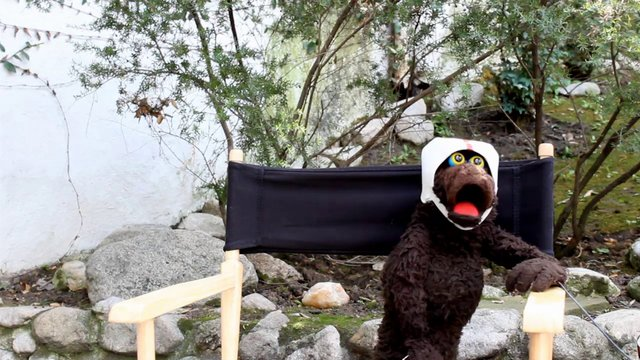 FTV 531 Monologue Verite - Warren The Ape