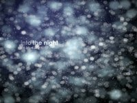 Into the Night - Kris Wade-Matthews