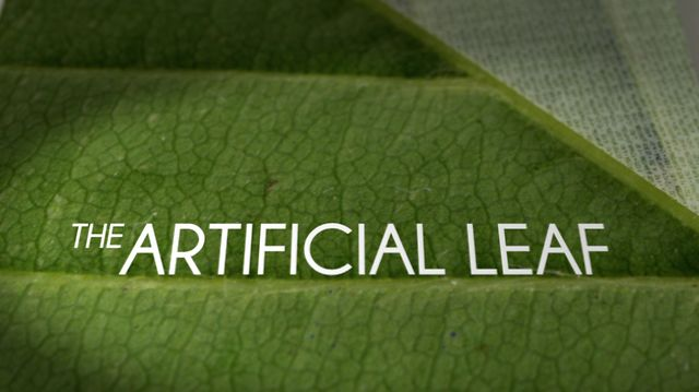 The Artificial Leaf | Jared P. Scott & Kelly Nyks