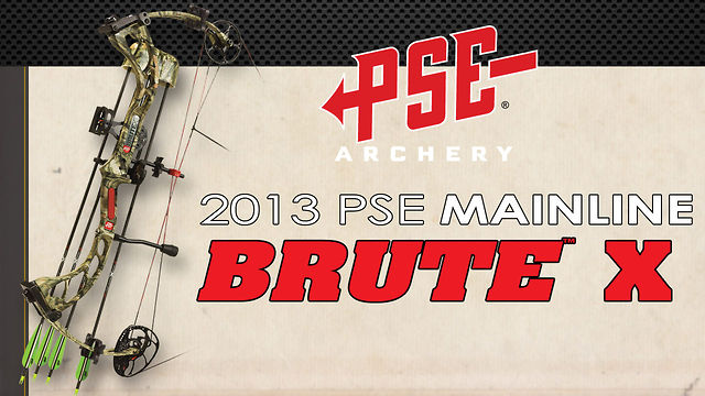 2013 PSE Brute X