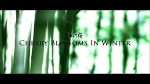"Feature Film ""Cherry Blossoms In Winter"""