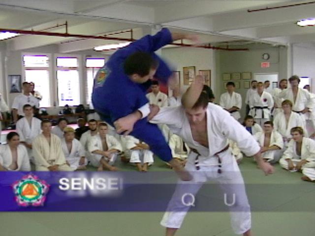 Ju Jitsu Techniques