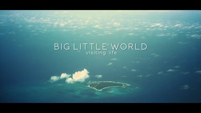 Big Little World