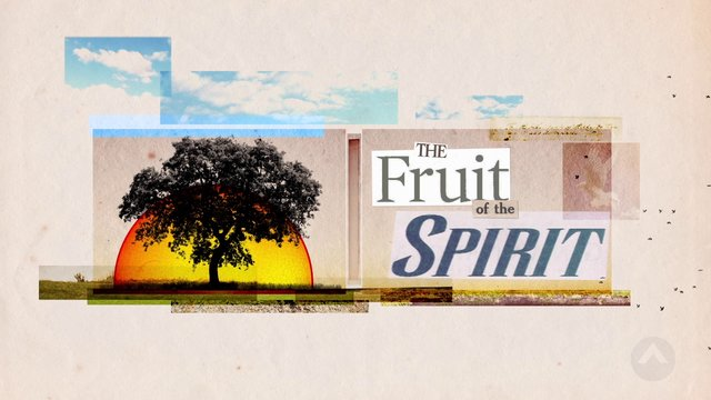 The Fruit Of The Spirit: What Seeds Will You Sow?
