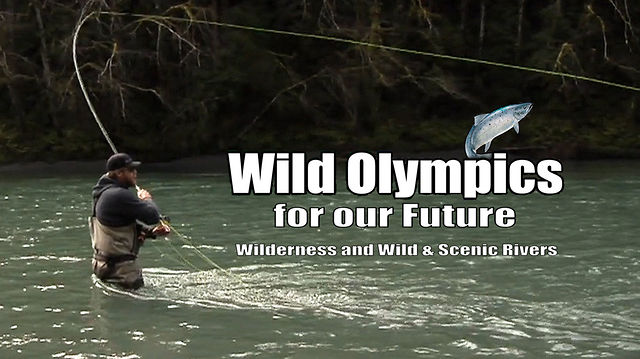 Wild Olympics for Our Future