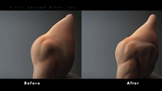 Animated sculpting for perfect body animations
