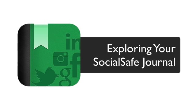 Exploring your SocialSafe Journal