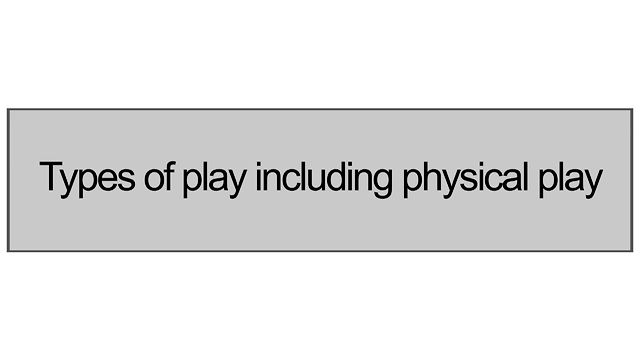 1.2 Types Of Play Including Physical Play