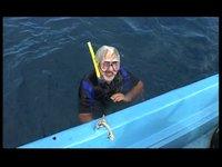 [Velisti per Caso] Ci immergiamo con Deborah Andollo
