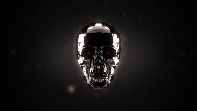 Skull Visualizer