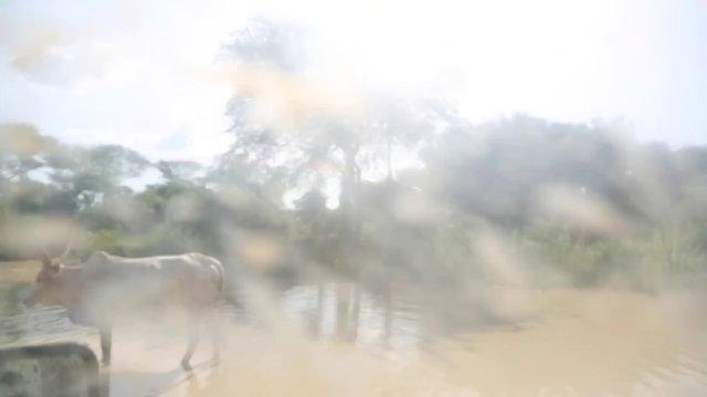 Panyagor to Bor, South Sudan