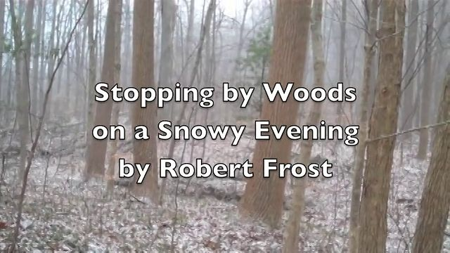 stopping by woods on a snowy evening english literature essay View notes - stopping by woods on a snowy evening essay with notes from eng 301 at wisc la crosse robert froststopping by woods on a snowy evening whose woods.