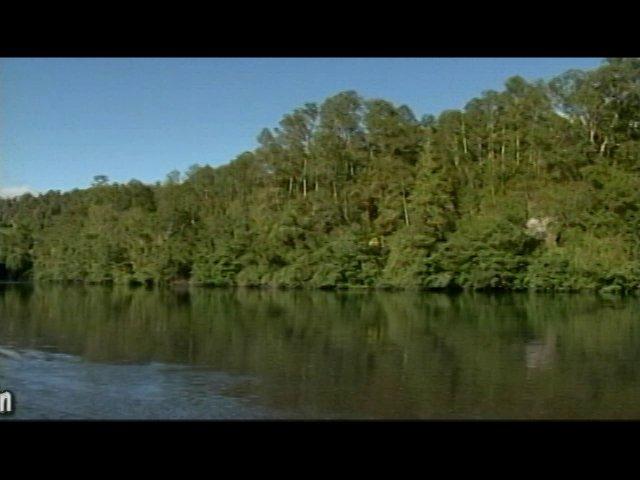 Andrés Condon - Tema: Lago Ranco