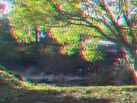 More Autumn in 3D