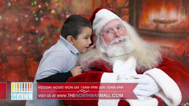 Happy Holidays Northway Mall 2012