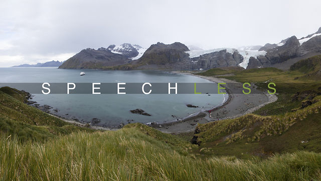 Speechless | Gold Harbour, South Georgia