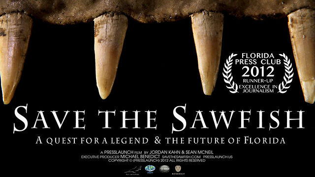 ecolSave the Sawfish