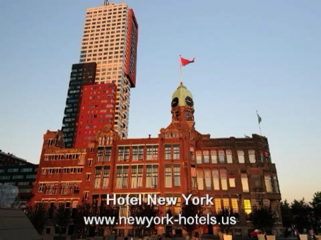 New york hotels cheap pet friendly midtown and central for New york pet friendly hotels
