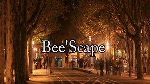 Bee'Scape : la vidéo de la Promo 2012 de l'ENSEIRB-MATMECA