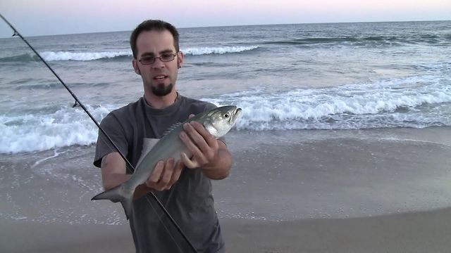 Surf fishing at cape hatteras on vimeo for Nc surf fishing report