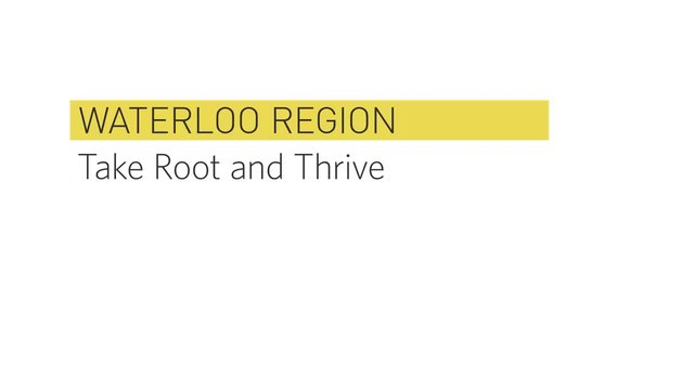 Waterloo Region - Where Businesses Take Root and Thrive