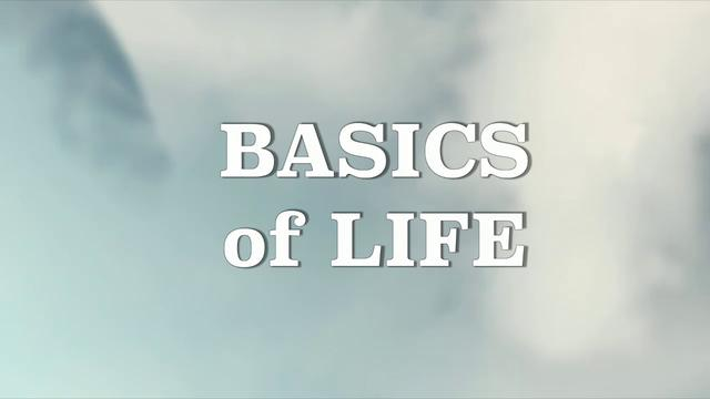 BASICS OF LIFE- LANISE 1-13