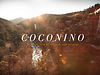 """Coconino,"" A Film by Kitchen Sink Studios"