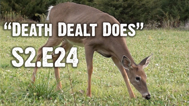 "Whitetails INC S2.E24 - ""Death Dealt Does"""