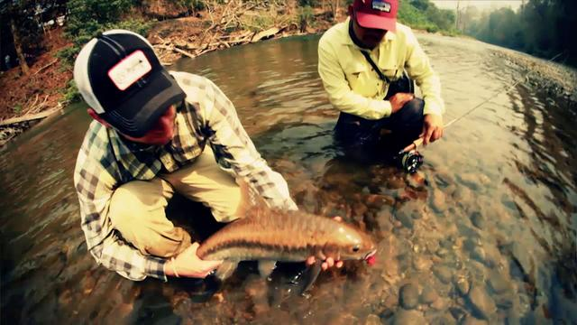 Fly fishing film tour 2013 on vimeo for Fly fishing films