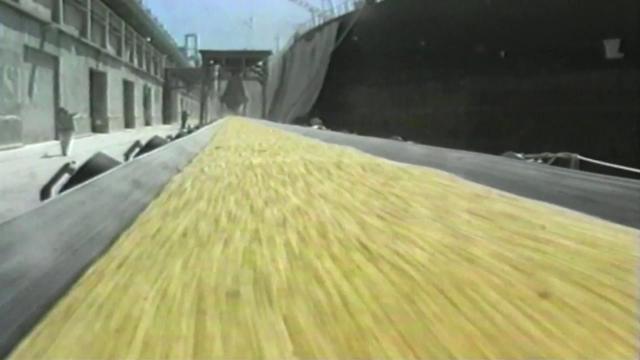 'Stop the Crop' - full film