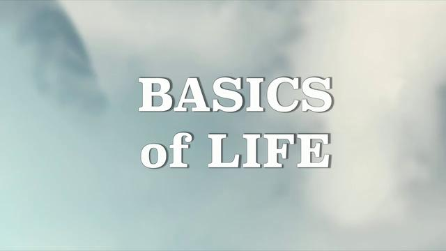 BASICS  OF LIFE- SCOTT 1-13
