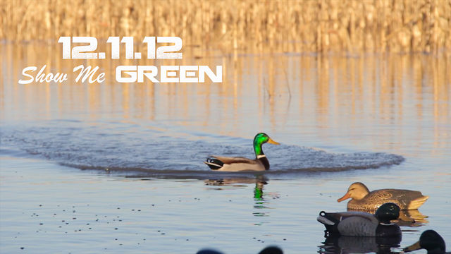 12.11.12 Show Me Green