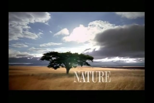PBS Nature