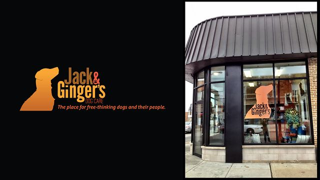 Jack & Ginger's Dog Care