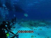 2012 11 BAHAMAS 0663