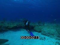2012 11 BAHAMAS 0706