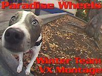 Paradise Wheels - Winter Team VX Montage