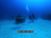 2012 11 BAHAMAS 5141