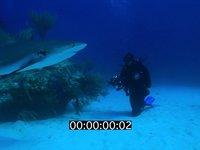 2012 11 BAHAMAS 5216