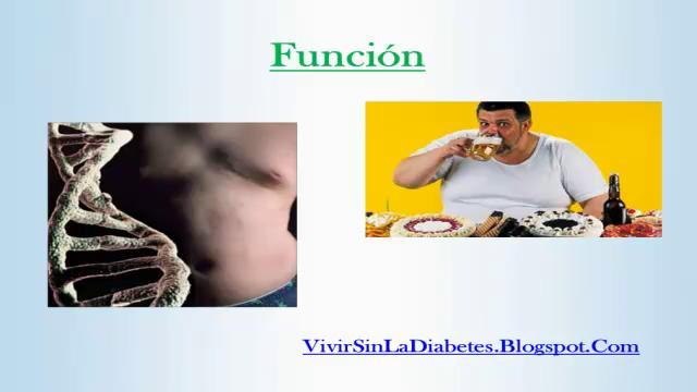 Que Causa La Diabetes. Causas De La Diabetes on Vimeo