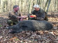 1 st Class Driven wild boar hunt II